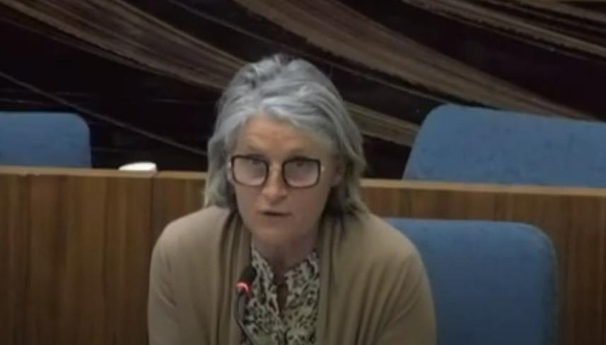 Mme Bellais, vice-présidente du département du Loiret, ouvre la journée