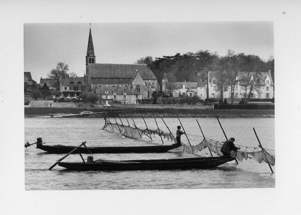 En amont de Blois, devant le village de Cour sur-Loire, M. Yves Rabin, un des derniers pêcheurs professionnels, procède au relevé de ses filets-barrages.